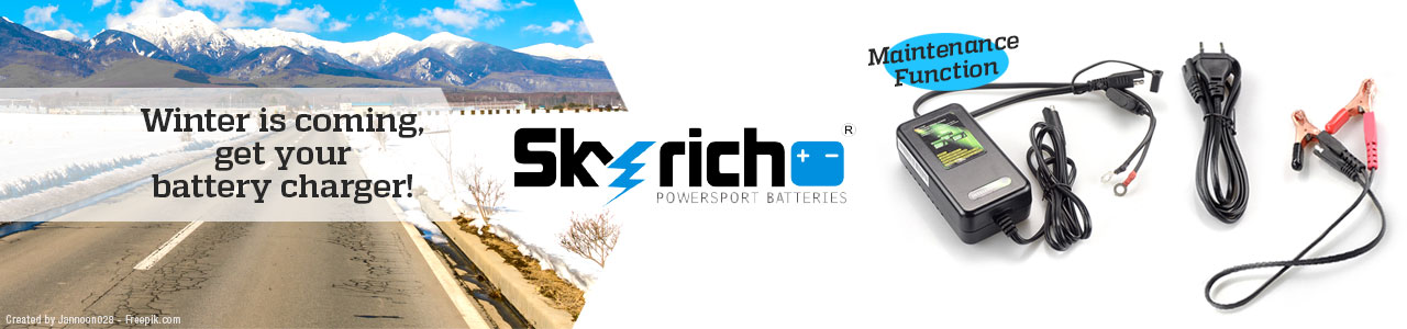 SKYRICH battery charger