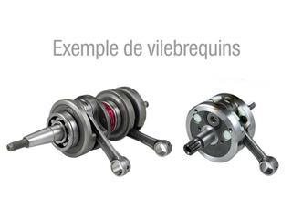 VILEBREQUIN COMPLET POUR KTM EXC-F250 '06-10 - 405008