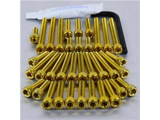 PRO-BOLT Engine Screw Kit GSXR1000 SUZUKI GSXR 1000 09-11 - Alu Gold