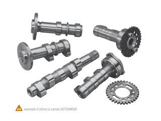 OHC AUSLASS KXF/RM-Z250