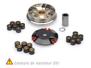 Variateur JASIL S1V PEUGEOT Ludix, Trekker - TR6040423