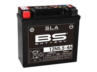 BS BATTERY 12N5.5-4A SLA Battery Maintenance Free Factory Activated