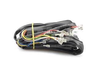 Cableado instalación eléctrica Vespa 162064/182312 - 45602