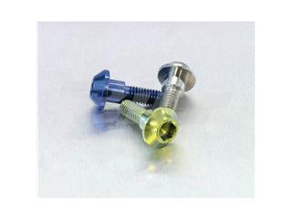 Tornillo de disco trasero Pro-Bolt (Pack de 6) Titanio Natural TIDISCR1R6 - 42c89af1-0e76-4764-bd7c-7186dc21fe15
