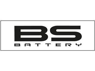"""Panneaux d'habillage de présentoirs magasin type """"Slatwalls"""" - BS BATTERY - 980056"""