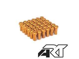 A.R.T Gold Spokes Head Set