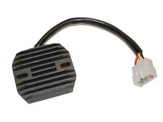 ELECTROSPORT Regulator Suzuki