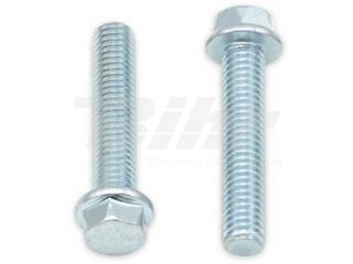 Tornillos con cabeza hexagonal de brida BOLT 8mm M6 x 1,00 x 30mm - 893380