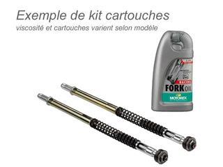 Kit cartouches de fourche BITUBO + huile de fourche MOTOREX Kawasaki ZX10R