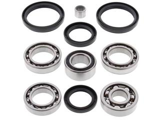 ALL BALLS Rear Differential Bearing & Seal Kit Arctic Cat/Kymco