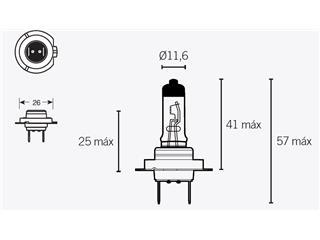 Box of 10 V PARTS H7 12V-55w bulbs