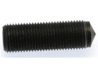 SCREW FOR DRILLED PIN BUZZETTI FOR 8944988