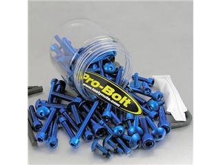 PRO BOLT Aluminium Screw Assortment Blue 100 pieces