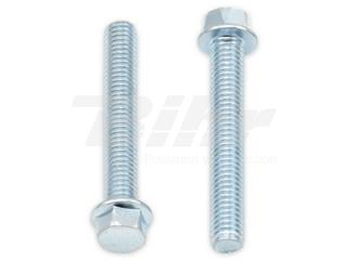 Tornillos con cabeza hexagonal de brida BOLT 8mm M6 x 1,00 x 18mm - 893392