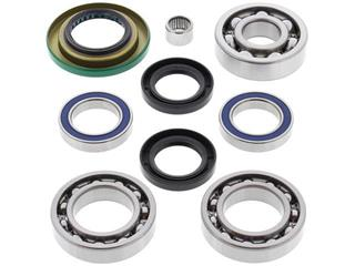 ALL BALLS Rear Differential Bearing & Seal Kit Can Am