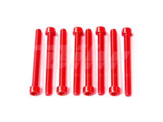 Kit parafusos allen cabeça cilíndrica  M6 x 60mm (10 pack) alumínio vermelha
