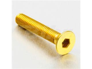 Tornillo de Aluminio Pro-bolt avellanado M6 x (1.00mm) x 35mm oro LCS635G