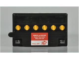 Batterie PANTERA+ YB12AL-A conventionnelle - cff60c0c-24f2-4c11-9c1e-c502f2d2f776
