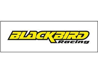 """Panneaux d'habillage de présentoirs magasin type """"Slatwalls"""" - BLACKBIRD RACING - 980062"""