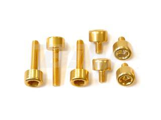 Kit parafusaria tampa reservatório Pro-Bolt alumínio TYA465G ouro
