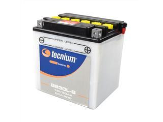 Batterie TECNIUM BB30L-B conventionnelle livrée avec pack acide - 329836