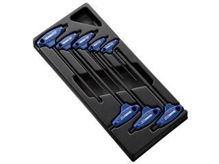 Module d'outils EXPERT 8 clés males 6 pans en T - plateau plastique - 89101128