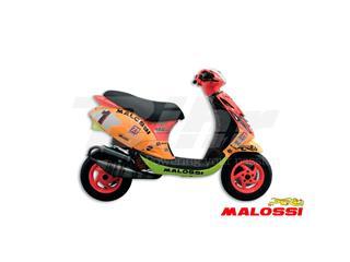 Escape Malossi MHR Ø47,6 PIAGGIO RACING MHR TEAM 3 3215341 - fb74de63-9afa-464d-b66b-b21778517afd