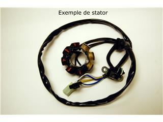 Stator ELECTROSPORT Suzuki RM125/250 - 011592