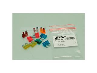 Mini fusibles BIHR 10uds - 3221310