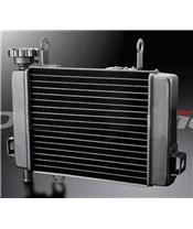 Radiador Bihr CBR 125 04-