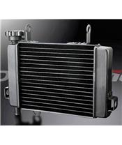 BIHR WATER RADIATOR FOR HONDA