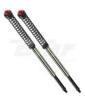 Muelles + cartuchos + ajustes de horquilla ajustable Sport Bitubo T0022ABB09WO