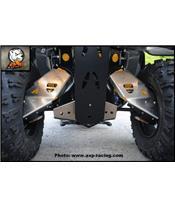 Protector de trapecio trasero AXP, aluminio, 6 mm, Can-Am