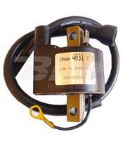Bobina DZE 4031 Encendido elec. CDI. 55mm