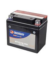 TECNIUM Battery BTZ7S Maintenance Free Factory Activated