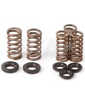 Complete kit of Hot Cams valve springs VSK4001